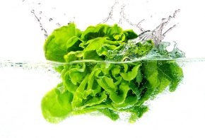 how-to-clean-and-store-lettuce-header