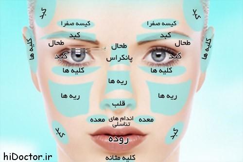 face-chart-3