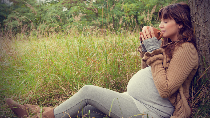516 چای سبز برای زنان باردار خطرناک است