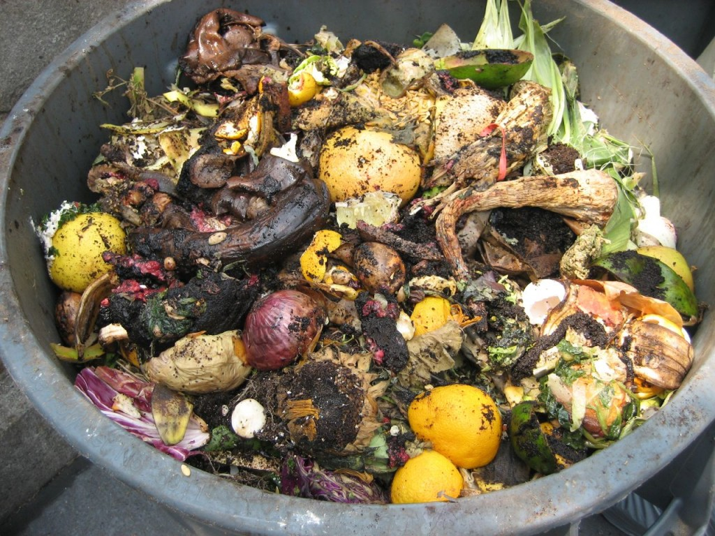Make-Your-Own-Green-Compost